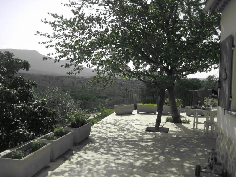 Terraces / Terrasses